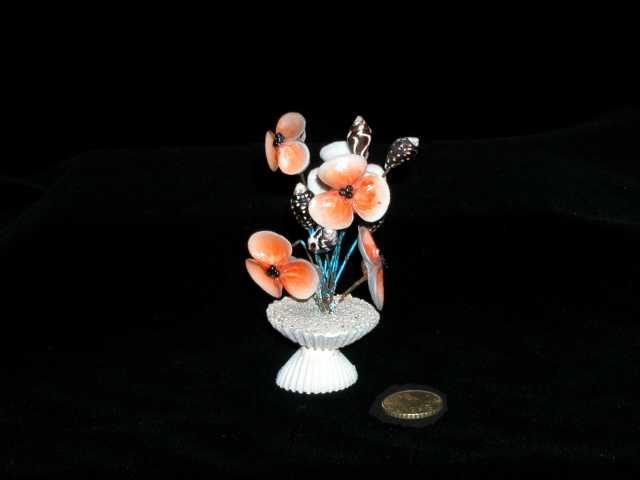 Florero de conchas. Menorca.